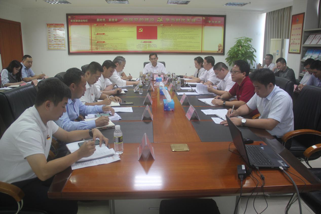 海南省水务集团召开党委(扩大)会议传达学习党的十九届四中全会精神